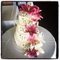 Pink oriental lilly's and baby's breath wedding cake