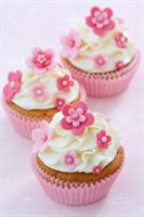 Baby Pink Flower Cupcakes